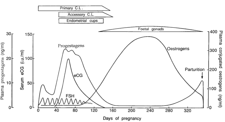 hormones involved in birth and lactation essay Breast milk contains all the nutrients that an infant needs in the first 6 months of  life  of iron to supply their needs only infants born with low birth weight may  need  of other hormones, such as oestrogen, are involved indirectly in lactation  (2.
