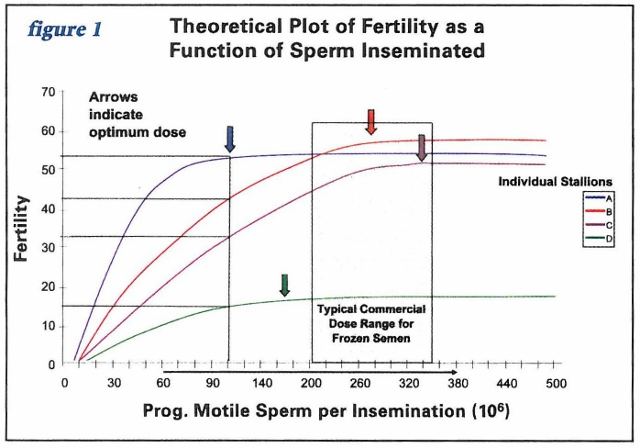 Fertility as a function of sperm inseminated