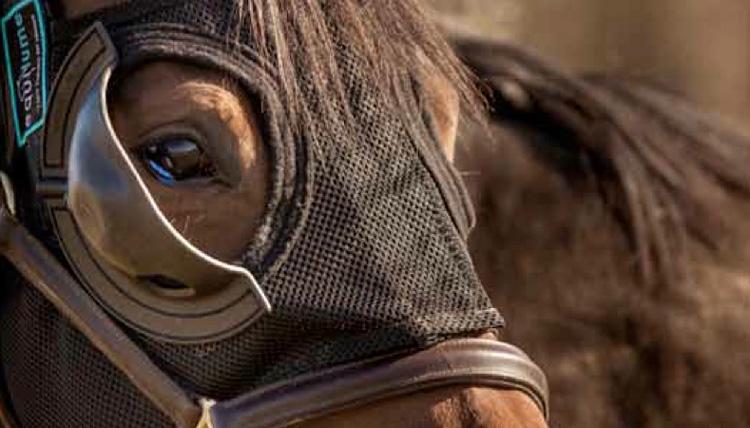 Equilume - mask closeup 2