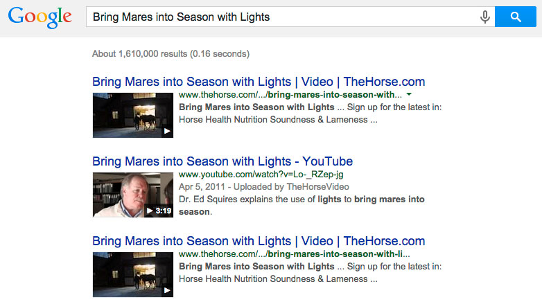 8 Tips - Mares Photo