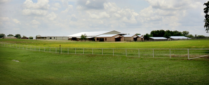Weatherford  Equine_Pasture and Barns