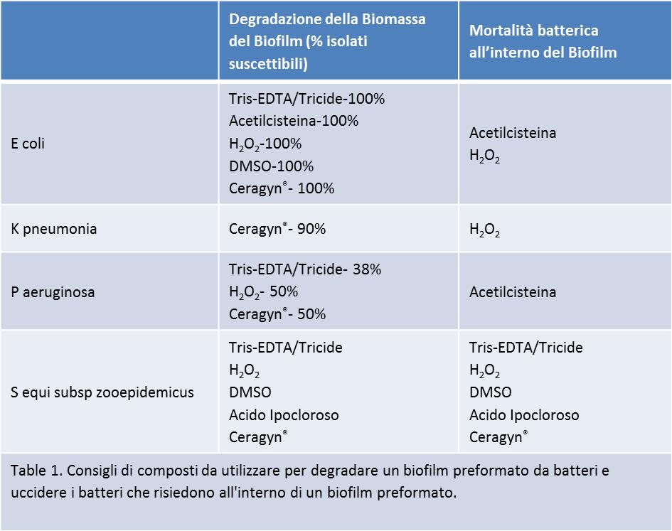 Biofilms in Mares_Table 1 Italian