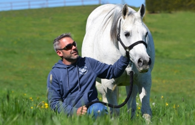 Maisonette - David and Grey Mare