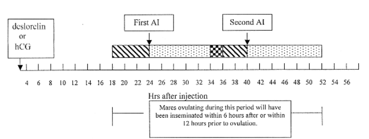 The History of the Timed Insemination Protocol - Graph