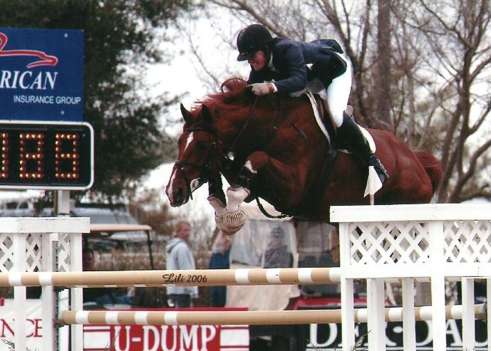 Stallion_Online Jumping