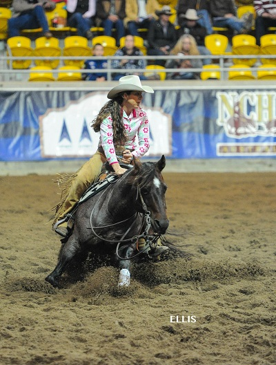 Teresa Russo_2016 Non Pro Gold Cup at NCHA Futurity in Tamworth