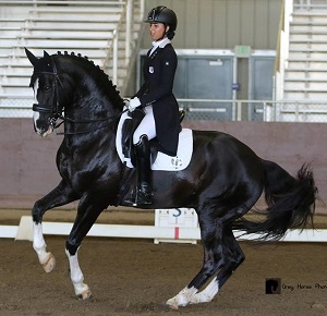 Select Breeders Services - Stallion semen freezing and