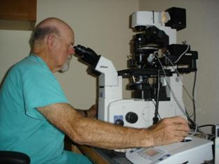 Trends in Equine Repoduction_ICSI Microscope