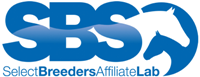 Sbs affiliate withouttag web%20200