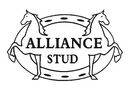 Alliance Stud