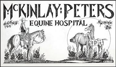Mckinley and peters equine hospital mod