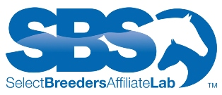 Sbs affiliate notag web. modjpg