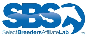Sbs affiliate notag web